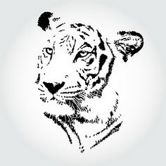tiger tattoo. love how simple it is <3