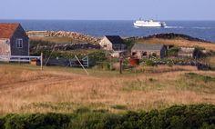 Rustic Rides Farm Block Island #IBelieveInRI