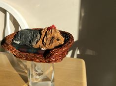 My Yorkshire Terrier figurine posted by Karen Miniaci,