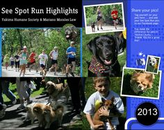 See Spot Run 2013 Highlights -- thank you for raising over $15,000 for spay/neuter initiatives & pet care in Yakima!