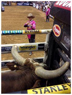2x World Champ PBR Bull Bushwacker And ShortyGorham Assessing The Situation