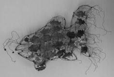 Floating fish - Abd A. Wire, Contemporary, Abstract, Awesome, Melbourne, Islamic, Paintings, Group, Friends
