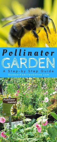 HOW-TO >>> Pollinato