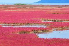 9. 三国峠【上士幌町】 - 北海道観光におすすめな「至極の絶景」26選。言葉を失うほどの美しさがここに…。 - Find Travel