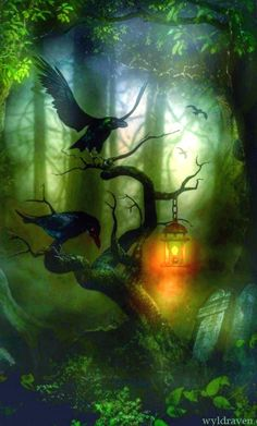 Forest ravens by Wyld Raven   Enchanted forest*¨*•.¸¸❧