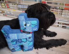 My standard schnauzer Wallraff with his new friend, the patchwork schnauzer Rutan (Swedish for the square, but also a nickname for Rut, old fashioned girls name :)