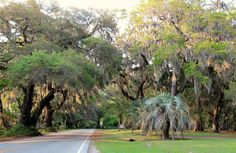 Things to do in Charleston....I want to do all of them!