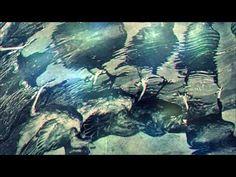 Bass Clarinet, Grand Piano, Aquarium, Painting, Goldfish Bowl, Aquarium Fish Tank, Painting Art, Paintings, Aquarius