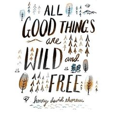 All Good things are Wild and Free ~Henry David Thoreau~ Inspirational Quotes.  Get out there and be a wild adventurer!