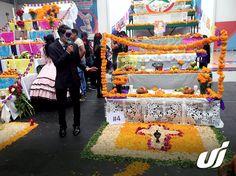 Universidad Interamericana Puebla