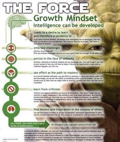 The Force of a Growth Mindset vs the Dark Side of a Fixed Mindset