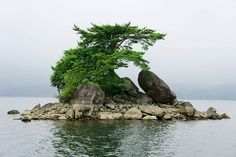 """Island in Lake Hibara, Yama District, Fukushima, Japan:"""