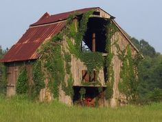 I'm a sucker for old barns that are falling apart. We've got a ton of them where I grew up.