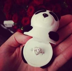 This is how I want Grayson Dolan to propose to me because I love him and pandas