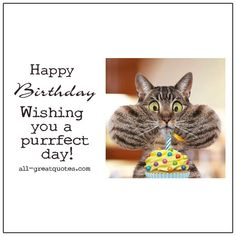 Happy Birthday - Wishing You A Purrfect Day!   all-greatquotes.com Free Funny Birthday Cards, Sister Birthday Quotes Funny, Cat Birthday Wishes, Happy Birthday Sister, Happy Birthday Funny, Birthday Greetings, Birthday Humorous, Birthday Sayings, Funny Happy