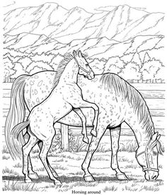 Free Printable Horse Coloring Pages For Kids | Horse, Adult coloring ...