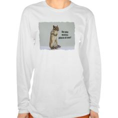 >>>Coupon Code          	Funny Chipmunk Picture Shirt           	Funny Chipmunk Picture Shirt In our offer link above you will seeThis Deals          	Funny Chipmunk Picture Shirt Review on the This website by click the button below...Cleck Hot Deals >>> http://www.zazzle.com/funny_chipmunk_picture_shirt-235038467681849503?rf=238627982471231924&zbar=1&tc=terrest