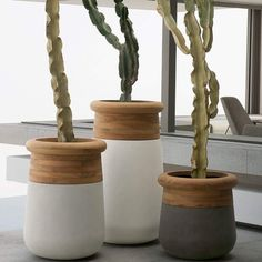 Image result for soma planters