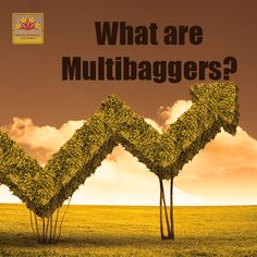 Multibagger stocks are those which provide huge returns over a period of time. Know what are multibaggers and trade with Dynamiclevels.
