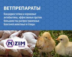 Антибиотики ENZIM Feeds ~ Ветеринарные препараты для сельскохозяйственных животных, птицы и рыбы ★ ЭНЗИМ (Украина) ★ Купить ➟ +38 (067) 582-33-22, +38 (095) 582-33-22