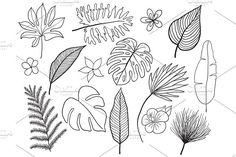 Hand drawn tropical leaves silhouette vector set. Set Leaf. Exotics. Vintage vector botanical illustration. by MilaArt17 on @creativemarket