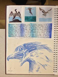 New gcse art sketchbook layout birds Ideas A Level Art Sketchbook, Sketchbook Layout, Textiles Sketchbook, Sketchbook Inspiration, Sketchbook Ideas, Art Deco Logo, Art Folder, Art Lessons, Art Reference