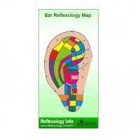 Interactive Ear Reflexology Map from The Universal College of Reflexology Ear Reflexology, Res Life, Holistic Medicine, Massage Therapy, Fashion Earrings, College, Map, Female, Health