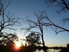 Milichs Landing II Pyap South Australia