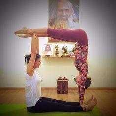 25 melhores imagens de yoga dupla  yoga yoga posições e