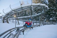 Alpincoaster Lucky Flitzer in Flachau - Rodelspaß im Sommer und im Winter #flachau #luckyflitzer #fun