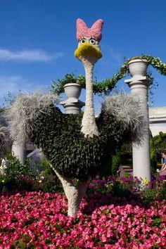 Disney Topiaries | Dancing Ostrich