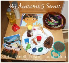 5 senses activity discovery table set up sight smell taste touch hear