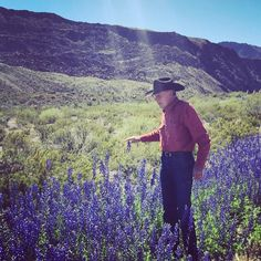Tall Texas bluebonnets and my 6 footer Jim on the River Road. Texas Bluebonnets, West Texas, Texas Travel, Le Far West, Blue Bonnets, Painting Tips, Wildflowers, State Parks, Places To See