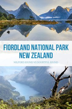 Discover Fiordland National Park in NZ's South Island Nz South Island, New Zealand Tours, Coach Tours, Milford Sound, Island Tour, Natural Phenomena, National Parks, Explore, Adventure