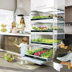 "Introducing the nano garden...a fully functional vegetable garden for your kitchen. The other ""gadgets of the future"" listed in here are A-MAZING! I'm in awe."