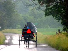 Amish convertible - New Wilmington, PA