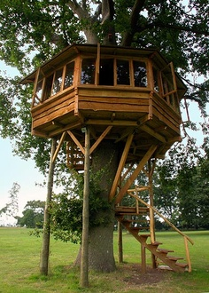 I would love to have a treehouse to play with the kids in.