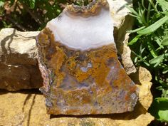 Beautiful Golden Plume Moss Agate Slab  73 by williamhowardjewelry, $12.00 #agate #jewelry supply #lapidary