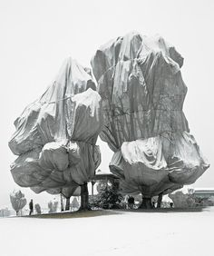 wrapped trees ~ christo and jeanne-claude