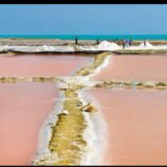 Salt Flats, La Guajira Colombia