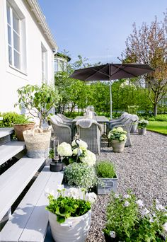 Gravel patio behind house with lovely white flowers and greenery. SOMMAR MED JYSK – House of Philia Pea Gravel Patio, Backyard Patio, Backyard Landscaping, Concrete Backyard, Landscaping Ideas, Backyard Ideas, Outdoor Rooms, Outdoor Gardens, House Of Philia