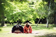 バラエティーat京都御所 の画像|*elle pupa blog*