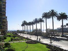 Av. Marina, Viña del Mar, Chile. 415022