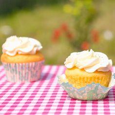 Deze scroppino cupcakes zijn onze variant op die heerlijke sorbet van citroenijs met wodka!