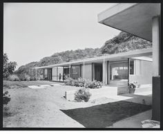 """The midcentury grounds, later overgrown by the owner's """"jungle,"""" were created by Garrett Eckbo."""