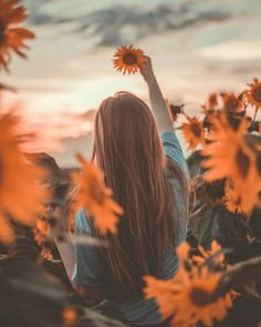 Image may contain: flower sky plant and outdoor Pixel Tuning Shop Sunflower Photography, Autumn Photography, Tumblr Photography, Creative Photography, Profile Picture For Girls, Profile Photo, Cute Girl Wallpaper, Wallpaper Doodle, Portrait Photography Poses