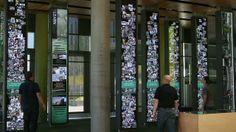 Oregon Cascades from Second Story -  Nine towering #panels filled with #interactive media and artifacts reveal the past, present, and possibilities of the University of Oregon experience. Staircases angle through the vaulted atrium of the Ford Alumni Center and flow into the Interpretive Center where Ducks connect, where visitors are welcomed, and prospective students congregate before their campus tours.