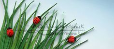Quilled Ladybugs in the Grass with Tutorial - Quilling by ManuK