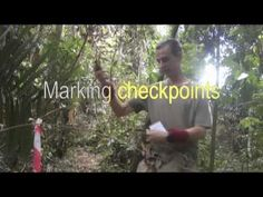 Navigating without a map in the jungle