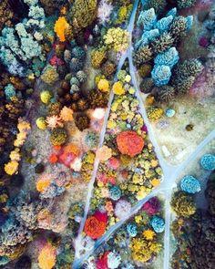 45 Extraordinary Drone Photography Ideas And Tips #dronephotographyideas